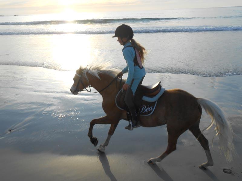 promenade-cheval-plage-lato