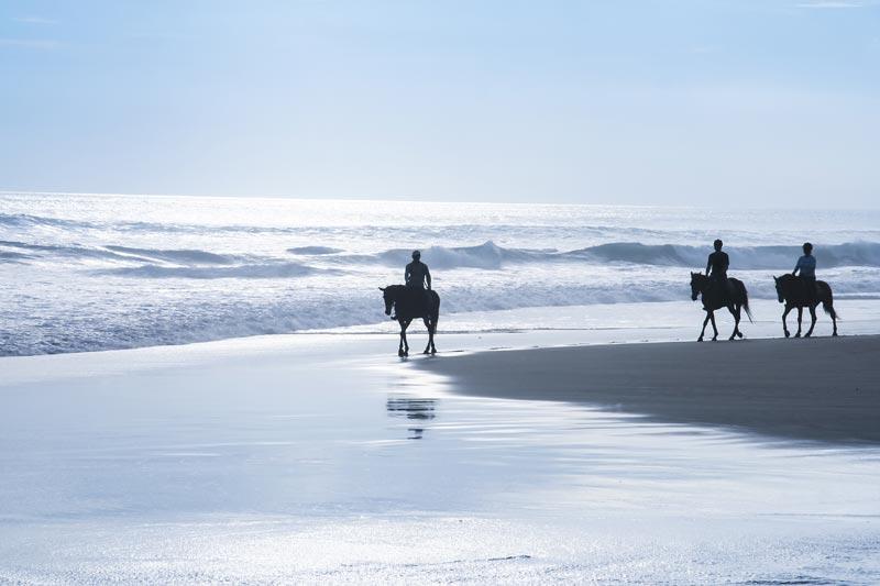 promenade à cheval sur la plage de l a Torche